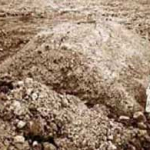 Mujahedeen Buried in Unmarked Graves