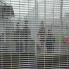 Chechen Children and Their Parents Closed in a Detention Center in France