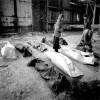 Terreur et impunité: Un système organisé (2002)