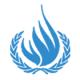 BM Çeçen Mültecilerin Sınırdışı Edilmelerinin Risk İçerdiğini Onayladı