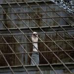 Çeçen Mahkum Rus Hapishanesinde Hayatını Kaybetti