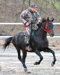Kukla Kadirov'un atlarından biri