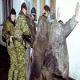 Quatre hommes ont été enlevés en Tchétchénie
