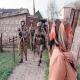 Une femme âgée a été enlevé dans la district de Chatoy